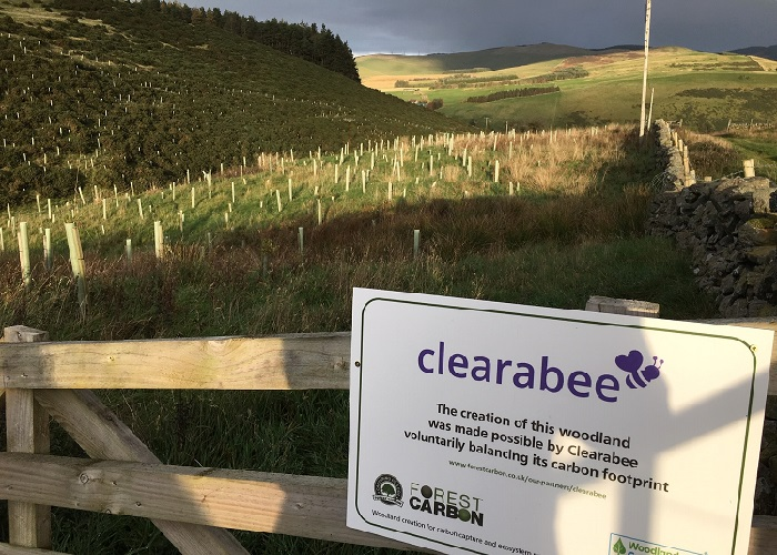 Clearabee commits to carbon neutrality by creating a new Scottish forest