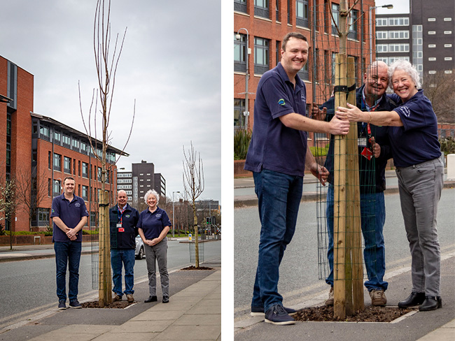 Tree-mendous success for community partnership